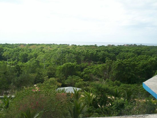 Blue Hole Mineral Spring: view from the roof