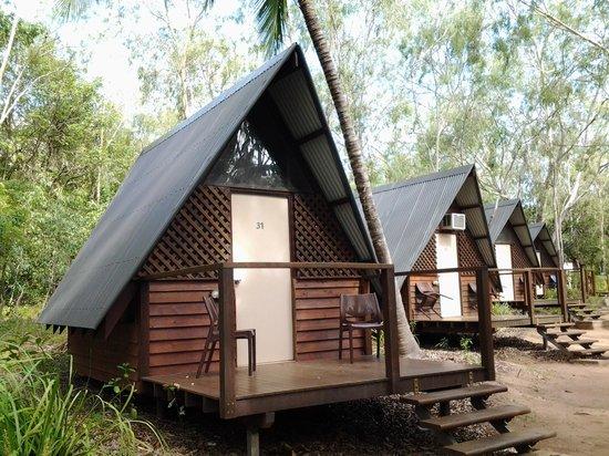 Bungalow Bay Koala Village: Bungalo row