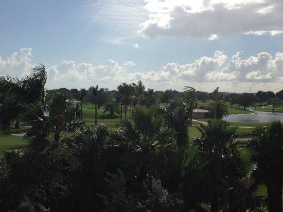 Provident Doral at The Blue Miami : Vista para os campos de golfe