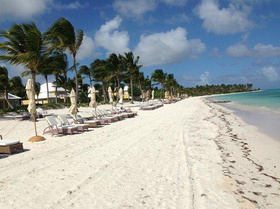 Tortuga Bay, Puntacana Resort & Club: Private Beach
