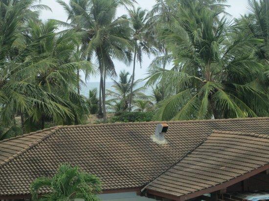 Sauipe Resorts: Vista do quarto.. para o mar.. quase não da para ver por causa dos coqueiros