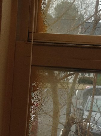 The Historic Powhatan Resort : Paint on window