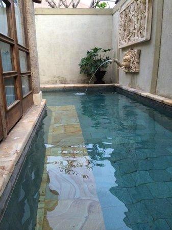 Desamuda Village: 2 bedroom pool villa pool