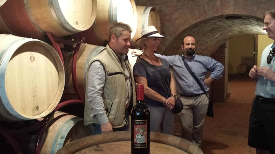 Just in Tuscany  Day Tours: Nutollo Winery