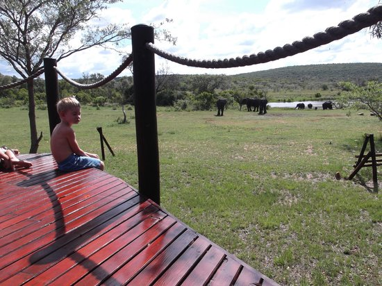 Metsi Lodge: Deck with a view