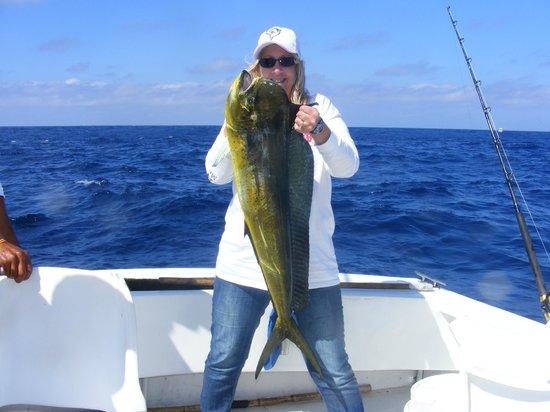 Hyatt Ziva Los Cabos: blue marlin charter