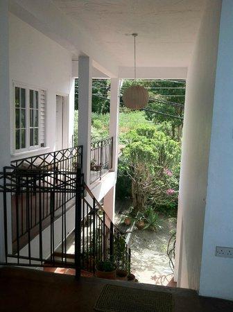 Green Roof Inn : Common area