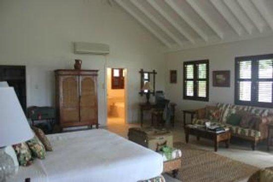 Ottley's Plantation Inn : Room View 2