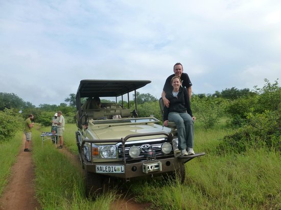 Naledi Bushcamp and Enkoveni Camp: Land Rover newbie trackers