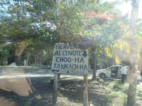 Cenotes Tamcach-Ha & Choo-Ha: Sign