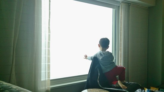 Hyatt Regency Boston Harbor: My son showing me the view in Rm.1421.