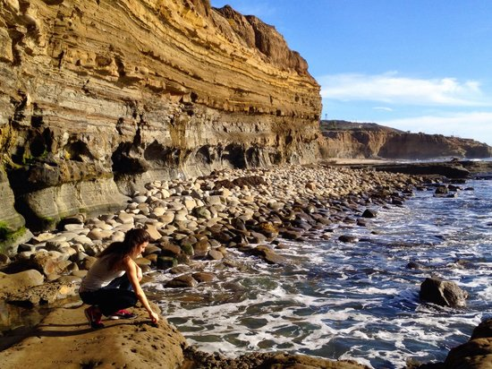 Sunset Cliffs Natural Park: Scogliera