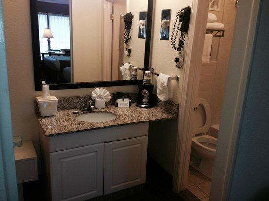 BEST WESTERN Asheville Tunnel Road: Room 205