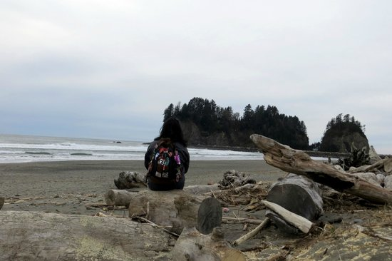 Quileute Indian Reservation: Beach