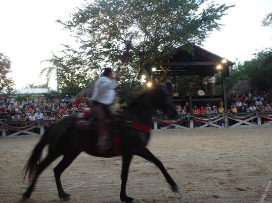 Xcaret Eco Theme Park: Horse show