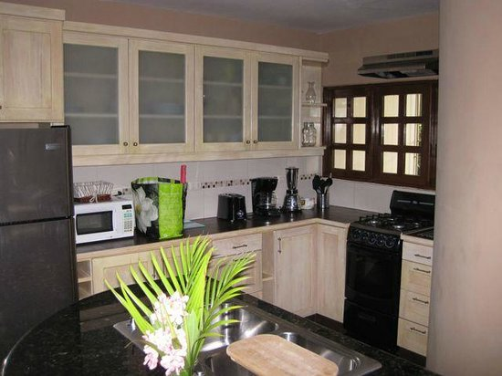 Cabarete Beach House at Nanny Estates: well equipped kitchen