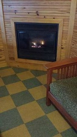 Lake Louisa State Park Camping & Cabins: Propane gas powered fireplace