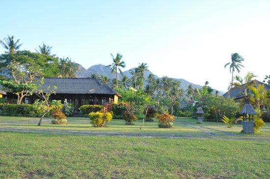 Amertha Bali Villas: hotel area