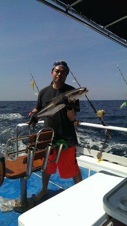 Phuket Fishing Charters: 5kg Cobia