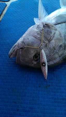 Phuket Fishing Charters : GT loves the big eye lure