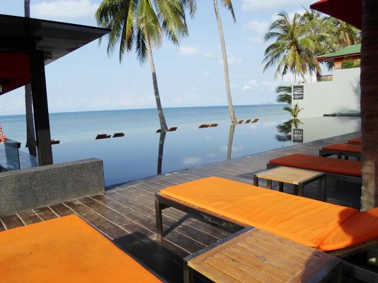 The Coast Resort - Koh Phangan : Infinity pool.