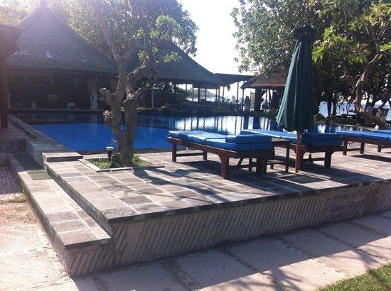 Amertha Bali Villas: pool