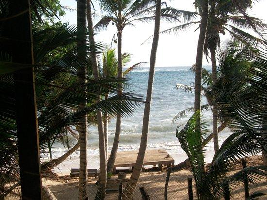 Casa Iguana: view from our cabana