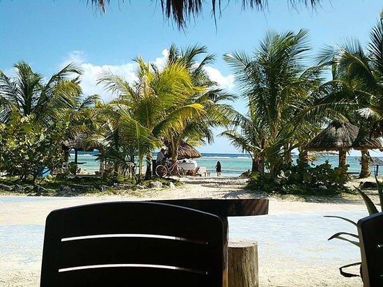 Blue Kay Mahahual : Vista desde el Bar