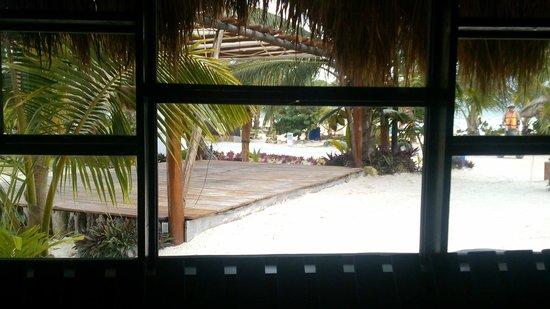 Blue Kay Mahahual: Vista desde la recepción
