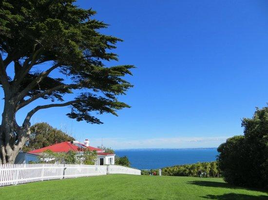 Tiritiri Matangi Island: Beautiful view looking out