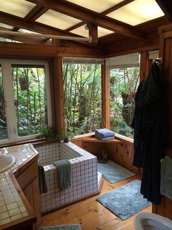 Volcano Rainforest Retreat : Guest Cottage