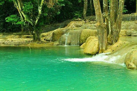 Tad Sae Waterfall : สระมรกต