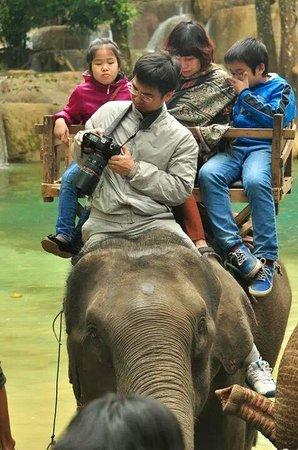 Tad Sae Waterfall: ขี่ช้าง2