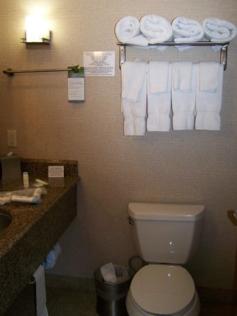 Comfort Suites Roswell: Bathroom