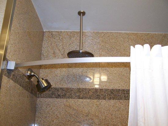 Comfort Suites Roswell: Rain head shower