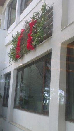 Jaypee Residency Manor: a view of flowers settings