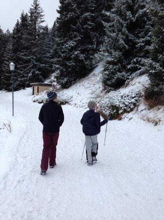 Riederalp: memorable walk to Betmerlap