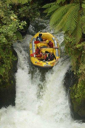 Rotorua Downtown Backpackers: Raft the Kaituna - Book here