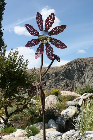 Orondo, WA: Yart flower by the waterfall