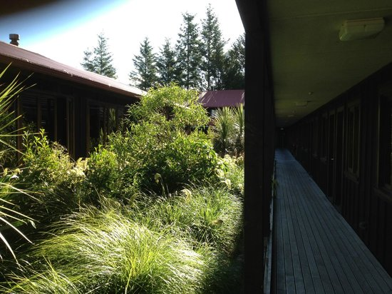 The Park Hotel Ruapehu : Accommodation along walkway to the right
