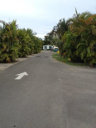 Alex Beach Cabins and Tourist Park: road in