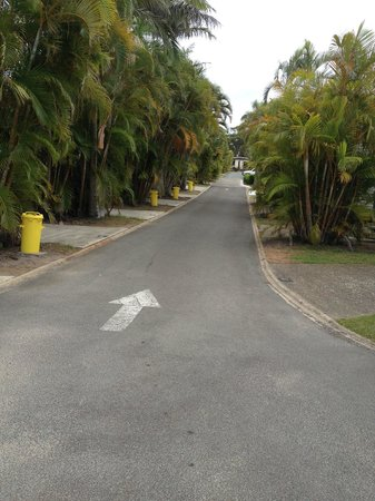 Alex Beach Cabins & Tourist Park: road