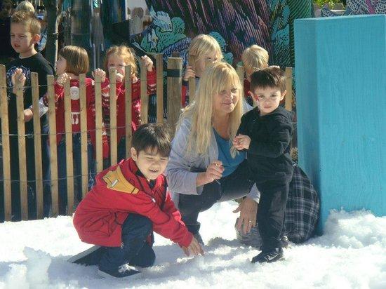 The Florida Aquarium : Snow day in December at the aquarium
