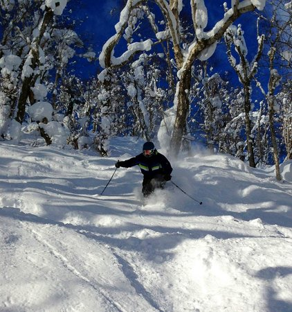 Rusutsu Resort Ski: Ski image