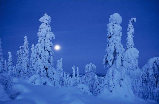 Finlandia: Winter Finland