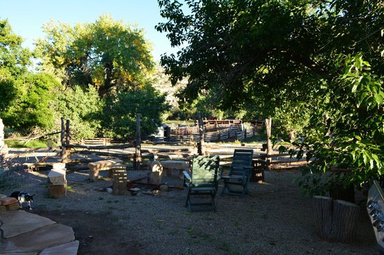 Canyon of the Ancients Guest Ranch: View from porch