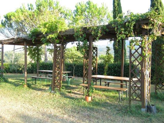 Agriturismo Il Catrino: giardino