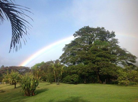 Sunset Hotel Monteverde : rainbow over sunsethotel