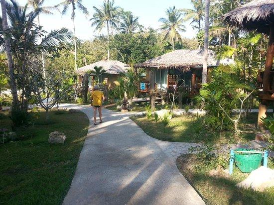 Ban Sainai Resort: Gartenanlage