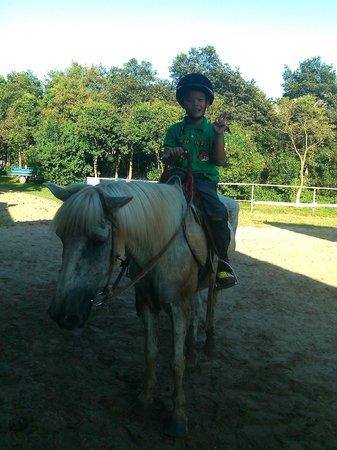 Sun Island Resorts: horsemanship